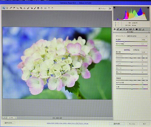 高解像度デジタル一眼レフカメラ(2400万画素数)の写真データを、高性能一眼レフデジタルカメラに採用されているCamera Rawデータを、Photoshop CCでRaw現像も問題なくおこなうことができた。