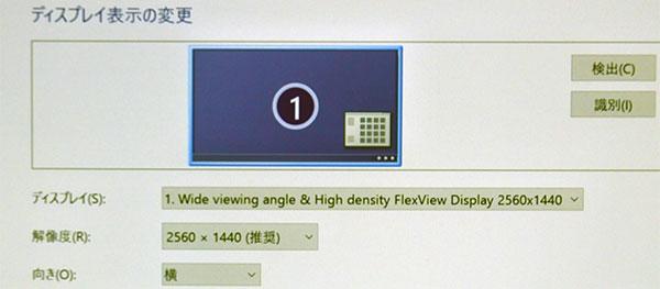 レビューモデルは高解像度WQHD(2560×1440)液晶を採用。