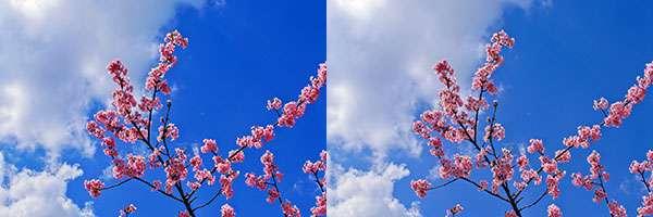 4K UHD液晶(Adobe RGB 100% 10億色表示)のディスプレイモニターによる外付けモニターとの色域表示のイメージ画像。